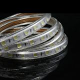 5050 60LEDs 220V / 240V LED Strip / tira flexible del LED