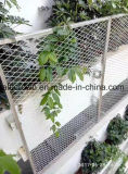 외부 벽 천장을%s 알루미늄에 의하여 확장되는 철망판