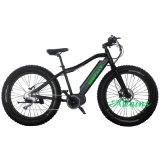 뚱뚱한 전기 자전거 디스크 브레이크 350W 중앙 드라이브 모터 전기 자전거