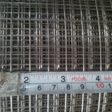 Дюйм 1m 1/2 * 25m Rolls гальванизировали сваренную ячеистую сеть