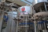 Usine d'Embouteillage d'eau intégré/Ligne de production de l'eau pure