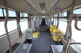 2017 nuevas carrocerías del omnibus/diseño del color, omnibus de lujo Slk6129 de la ciudad del pasajero