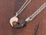 Roestvrij staal van charmes nam de Gouden Zwarte Tegenhangers van de Halsband van de Liefde van het Hart van het Kristal van de Kleur voor de juwelen van de Paren van Minnaars toe