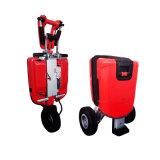 熱い48V 250Wの強力な電気スクーター、電気自転車、都市旅行スクーター、スマートな移動性のスクーター