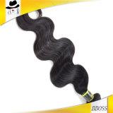 ブラジルの人間の毛髪は楽しむ様式を選択する