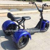 2017脂肪質のタイヤ1000Wモーター工場価格の電気三輪車のスクーター