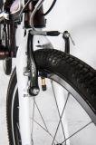 Для изготовителей оборудования с возможностью горячей замены заводская цена продажи дешевой Hi-Ten вилочный захват Chainless складные велосипеды для женщин мини-велосипед