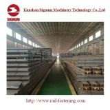 Norma chinesa GB2585-2007 50kg de ferro de aço