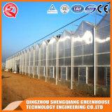Großes Heiß-Galvanisierung Gewächshaus landwirtschaftlich für Gemüse/Garten