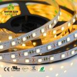 Alta qualità calda di vendita 60/120 di striscia di LEDs/M SMD 5050 RGB LED in azione