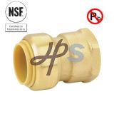 Couplage en bonne santé de connecteur de poussée en laiton sans plomb de NSF de qualité
