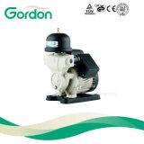Ga101 hogar eléctrico pequeño bomba de agua con el impulsor de latón
