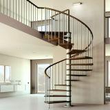 Exterior moderno de escalera de caracol de hierro con la banda de rodadura de madera maciza
