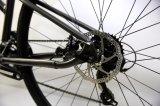 Venda populares 700c 21 Bicicletas Fitness Velocidade (DS1-15)
