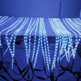 pixel의 DMX512 LED 리본 RGB 화소