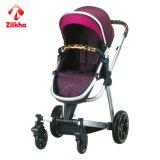 Prodotti del bambino - passeggiatore del bambino