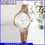 ODM van het Horloge van het Embleem van de douane het Toevallige Horloge van het Staal (wy-135E)