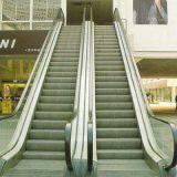 800 mm de largura interior Vvvf Passo escada rolante