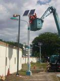 Indicatore luminoso di via solare su ordinazione poco costoso libero di rendimento elevato IP66 di manutenzione