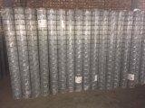 Nuova maglia d'acciaio standard della rete fissa da vendere