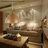 Moderner einfacher Leuchter-hängende Beleuchtung mit hölzerner Farbe