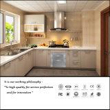 Alta scheda lucida UV per l'armadio da cucina (ZH3930)