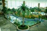 코코야자 종려 4.8m 15lvs (GU-BJ-831-4.8M)의 인공적인 플랜트 그리고 꽃