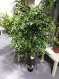 Alta qualità del circuito di collegamento naturale Gu-Mx-Wt-Ficus-2.2m delle piante artificiali