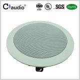 5.25 Zoll-TitanabdeckungTweeter im Decken-Lautsprecher mit Glasfaser-Kegel