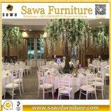 Chiavari preside cadeiras de Tiffany Chiavari do casamento e do evento para a venda