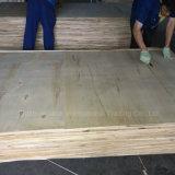 [25مّ] [بويلدينغ متريل] تجاريّة خشب رقائقيّ زخرفة مادّة