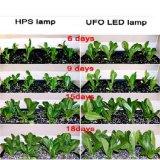 LED 식물 성장 빛