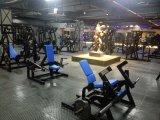 Nombres del equipo de la gimnasia/máquina comercial/amaestrador funcional multi
