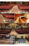 ترقية فولاذ كرسي تثبيت لأنّ كنيسة/مكتب/قاعة اجتماع/اجتماع/مدرسة/مؤتمر