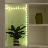 LED nell'ambito dell'indicatore luminoso SMD 3528 LED del Governo per la lampadina del sensore di movimento del guardaroba PIR della cucina