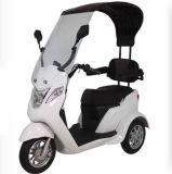 Motorino elettrico del triciclo