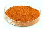 [20مغ] برتقالين من معمل بصر صحّة برتقالين مقتطف كبسولة ملحق