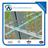 Doppio recinto di filo metallico con i doppi collegare orizzontali