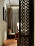 Perforierte Metallbildschirme und Muster, Laser-Schnitt, dekoratives Panel