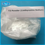 L-Triiodothyronine gordo del CAS 105-41-9 de las hormonas del T3 del sodio de Liothyronine del producto de la pérdida