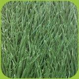 [55مّ] إرتفاع صليب شكل عشب اصطناعيّة لأنّ [فووتبلّ فيلد]