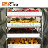 Nuovo essiccatore di gelata di vuoto di disegno per frutta e la verdura