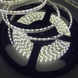 순수한 백색 LED 지구 측 광도