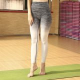 طبع [يوونغ جرل] زاويّة رياضات نظام يوغا لباس قطرة نظام يوغا لهاث