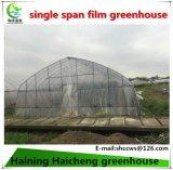 필름 최신 직류 전기를 통한 강철 구조물을%s 가진 단 하나 경간 녹색 집