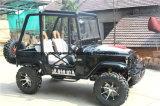 Va la spiaggia elettrica ATV del motociclo 250cc Cina del carrello