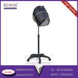 大広間装置(DNのための新しいデザイン美の毛の乾燥。 H9809)