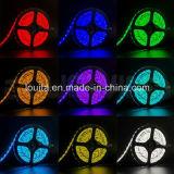 Bande LED LED SMD 5050 haute puissance