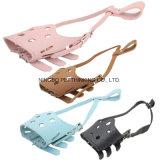 , 분홍색, 브라운 애완 동물 총구 파란, 개 총구