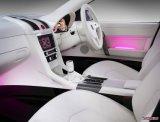 Dikke In reliëf gemaakte ABS Bladen voor de Auto van de Auto binnen